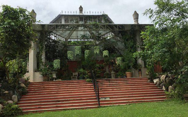 Jardín Botánico Vallarta, santuario de las orquídeas