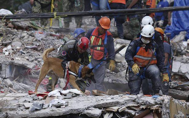 Sube a 286 la cifra de muertos en México tras el sismo