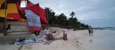 Profepa clausura obras en zona de playa de hotel en Tulum