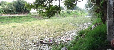 Emprenderán campaña de limpieza del río Yautepec