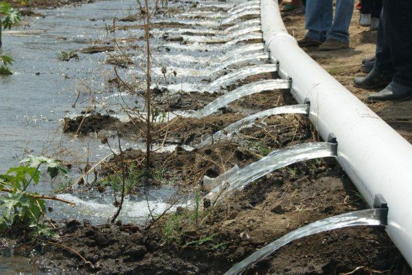 Incentivan producción agropecuaria con energía