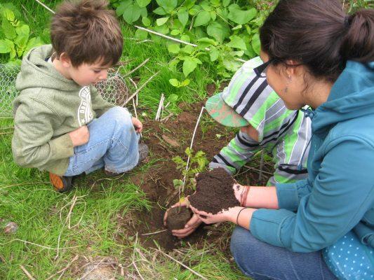 [GALERÍA] Siembran nuevo bosque en Cuautla