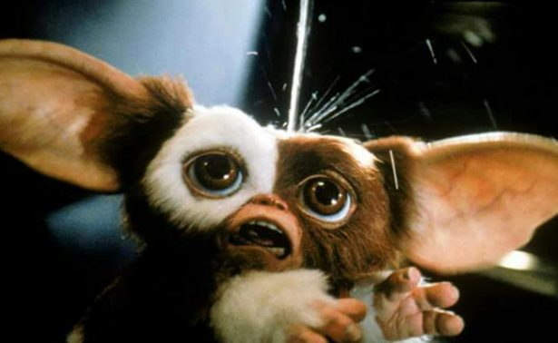 """¡Noticias monstruosas! """"Los Gremlins"""" regresan con nueva película"""