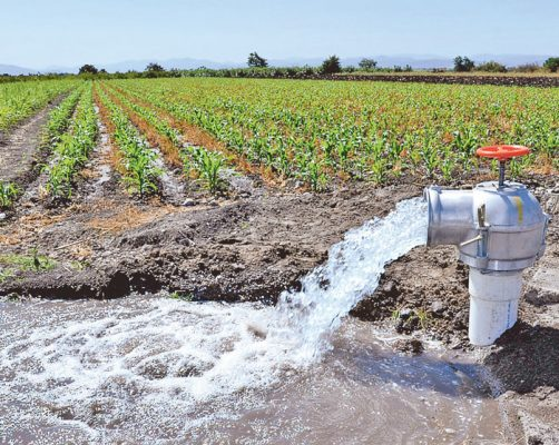 Sin agua, 250 mil personas