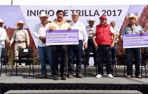 Morelos se consolida entre los principales productores del campo