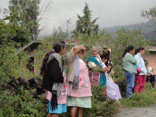 Buscan ampliar el uso de la medicina tradicional