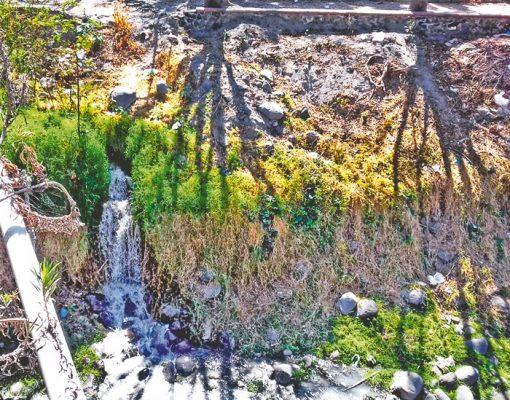 Alerta sanitaria en el río Cuautla