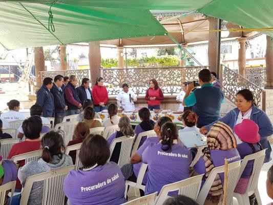 Texcalpan, comunidad saludable: SSA