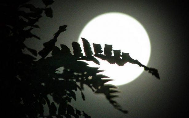 [Fotos] Domingo de super luna y así se ve desde distintas ciudades del país