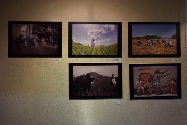 """""""AnDanzas de Morelos"""": El cultivo del arroz hecho danza"""