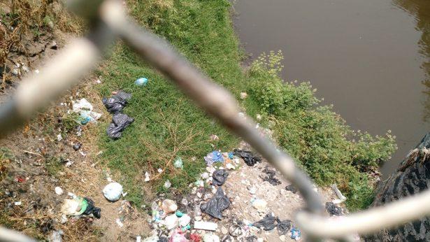 Envenenan ríos de Jojutla