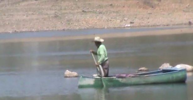 Provocan granjas de peces de ornato invasión en ríos