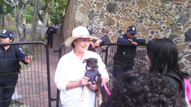 Aclara Dora Anaya situación por la visita a sus perros