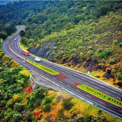 Repondrán árboles talados por obras ampliación carretera