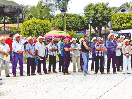 Reciben apoyos 300 productores agrícolas