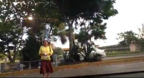 Mujer destroza imagen religiosa en Tamaulipas — LadyVirgen