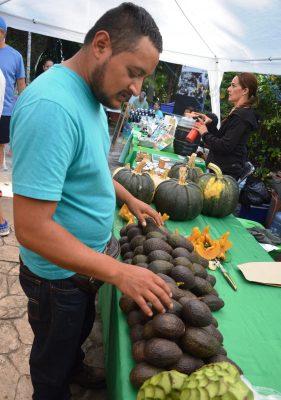 Domingo, última edición de Mercado Verde en Chapultepec