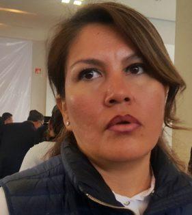 Hortencia Figueroa, diputada local del PRD.