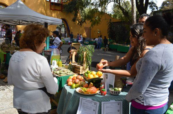 Reinicia el domingo el Mercado Verde