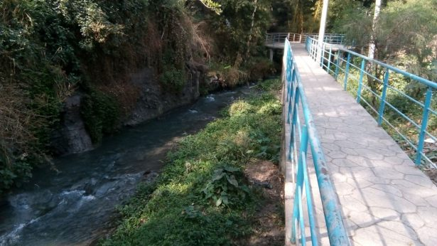 Denuncian agua contaminada