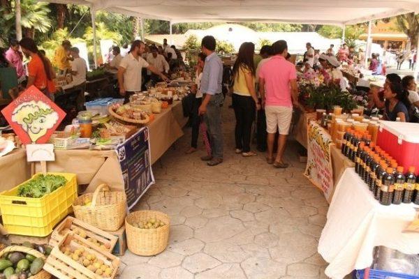 Edición especial del Mercado Verde el fin de semana