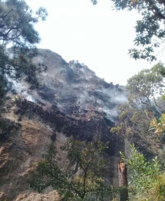 Casi sofocado, incendio forestal en Tepoztlán: SDS