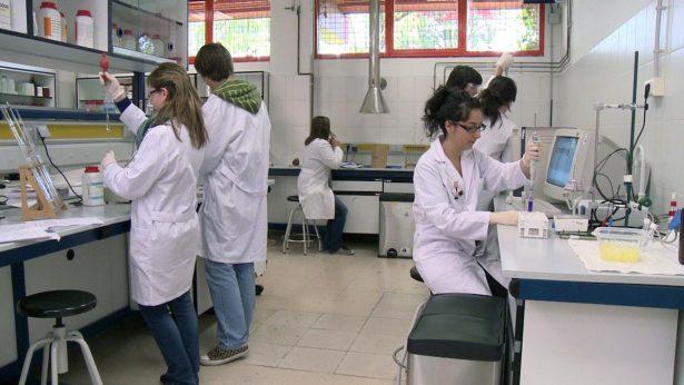Próximamente laboratorio de crisopas en Morelos
