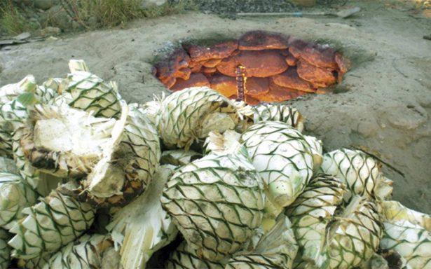 Festival de Bacanora reúne a comerciantes de diferentes países
