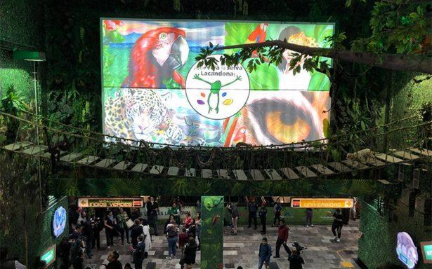[Galería] Visita la Selva Lacandona ¡en el metro Viveros!