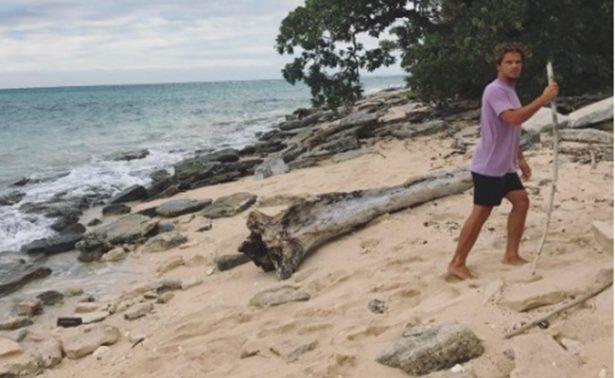 La vida entre olas de Julián Wilson