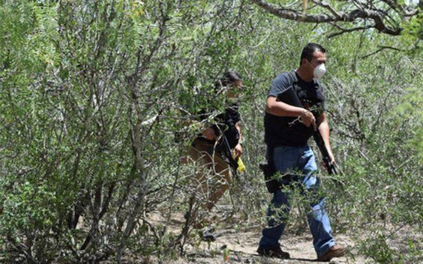 Hallan en Tamaulipas tres cadáveres en fosa clandestina