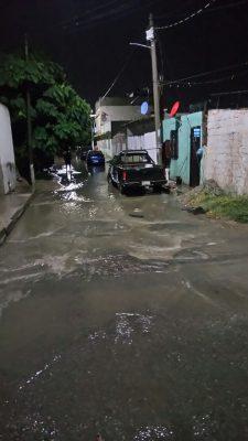 Caída de árboles y encharcamientos tras lluvia registrada en G.P.
