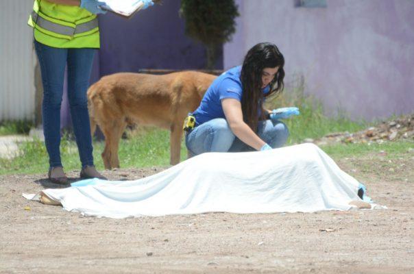 Artera ejecución en la J. Guadalupe Rodríguez