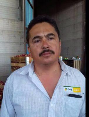 Inicia el proceso de refrigeración de manzana en Canatlán