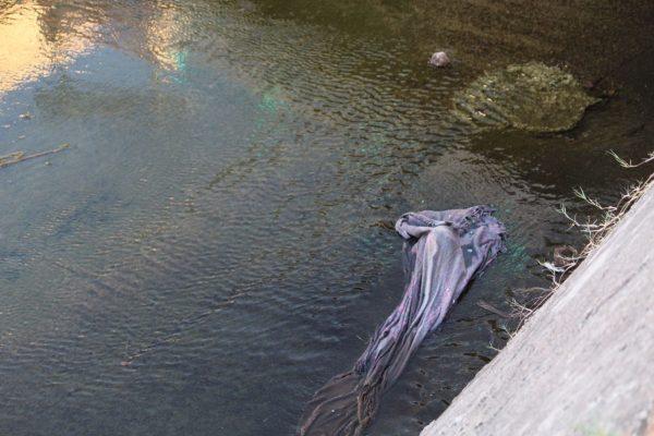 Encuentran cuerpo de bebé flotando en el Arroyo Seco