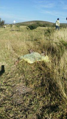 Sexagenario murió atropellado alcaminar por la orilla de la carretera