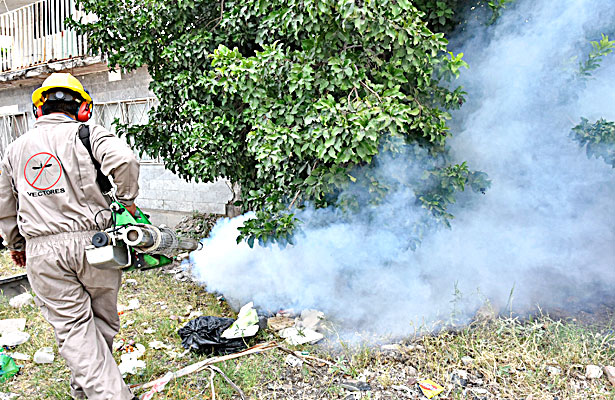 La Laguna registra 331 casos de dengue confirmados