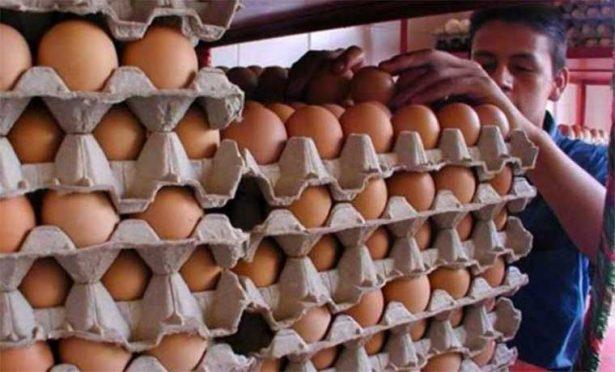 Detecta Profeco venta de kilo de huevo hasta en 40 pesos: Gallegos