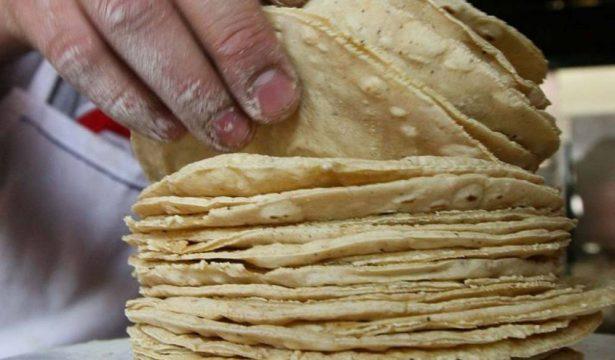 Tortillerías de La Laguna, en vías de extinción