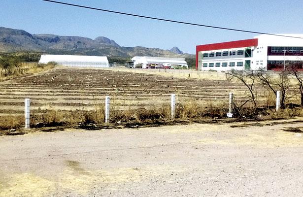 Entrega SAGDR semilla de mala calidad a productores de Rodeo