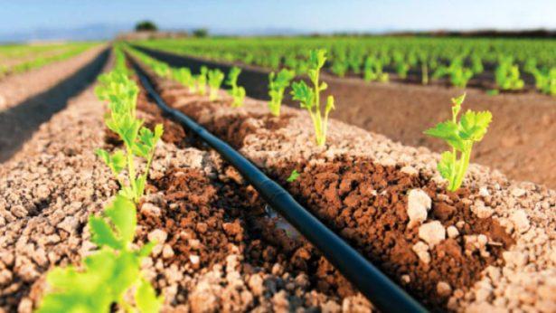 Buscan apoyo gubernamental para instalar sistemas de riego en Canatlán