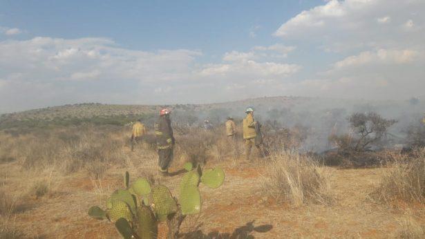 Combaten bomberos enorme incendio de pastizales en G.V.