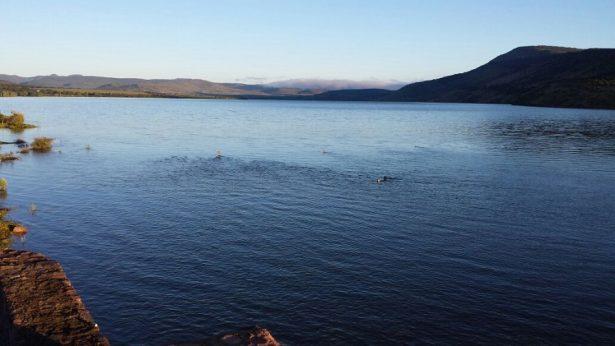 Cierra compuerta presa Caboraca por presencia de lluvias en Canatlán