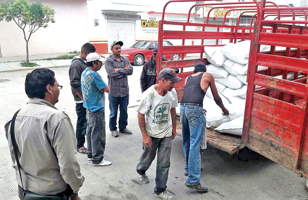 Entregan 40 toneladas de semilla de avena a productores neoidealenses