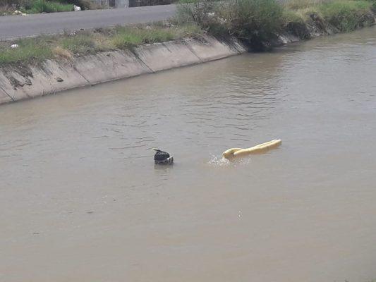 Localizan cuerpo de hombre ahogado