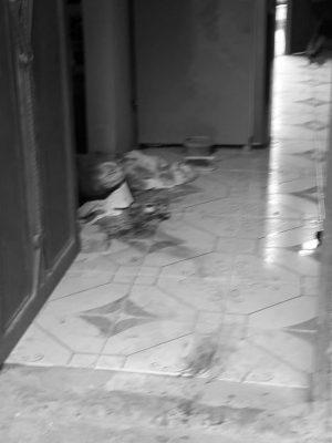"Asesinan brutalmente a mujer; la ""cosieron"" a puñaladas"