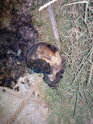 Encuentran cráneo calcinado en colonia de G.P.