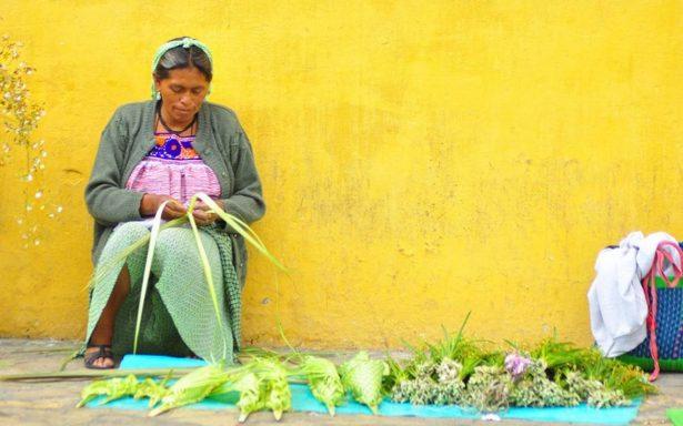 #DATA | La riqueza lingüística de México