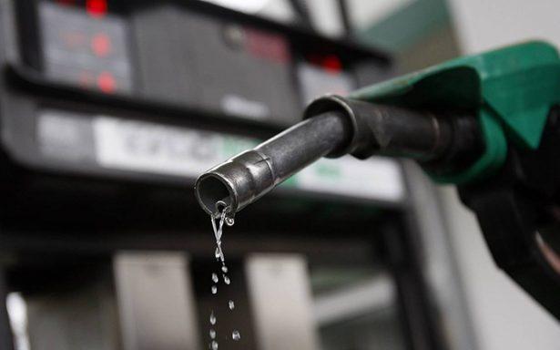Se prevén precios bajos de gasolina en cinco o siete años: Pech Razo