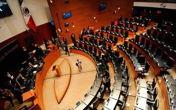 Acción Nacional acapara las candidaturas para el Legislativo